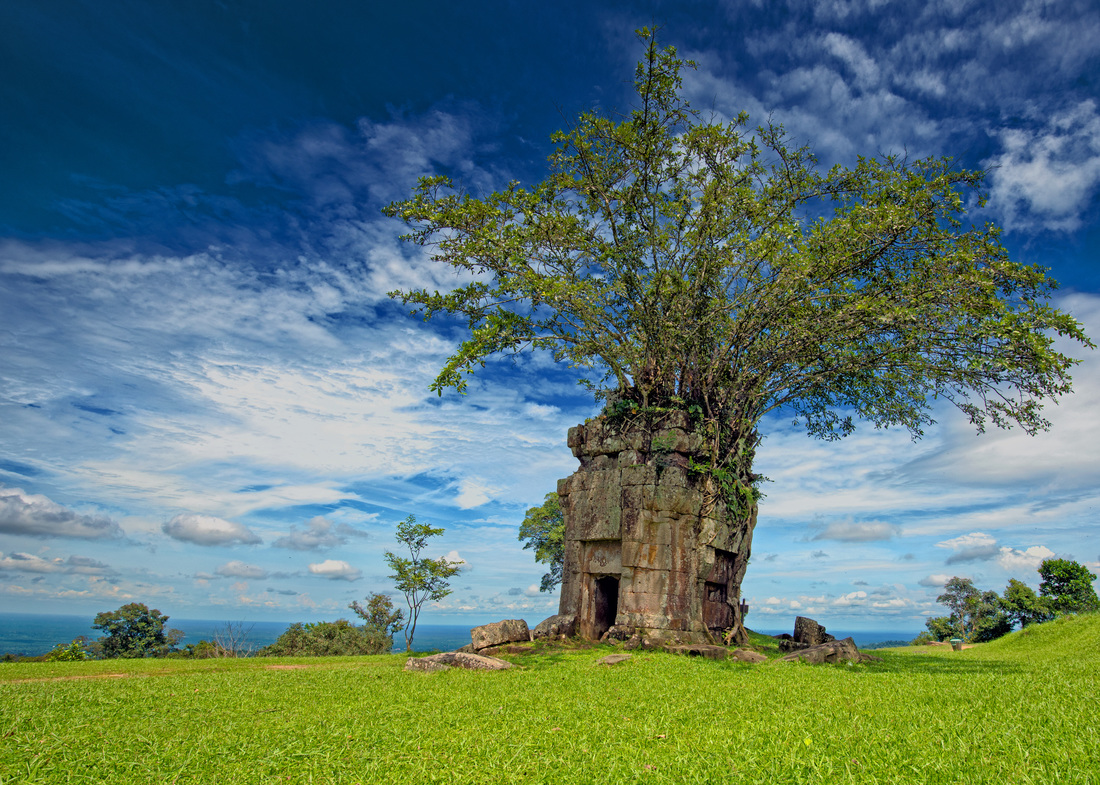 A tree covered shrine, Prasat Preah Vihear, Preah Vihear Province Cambodia