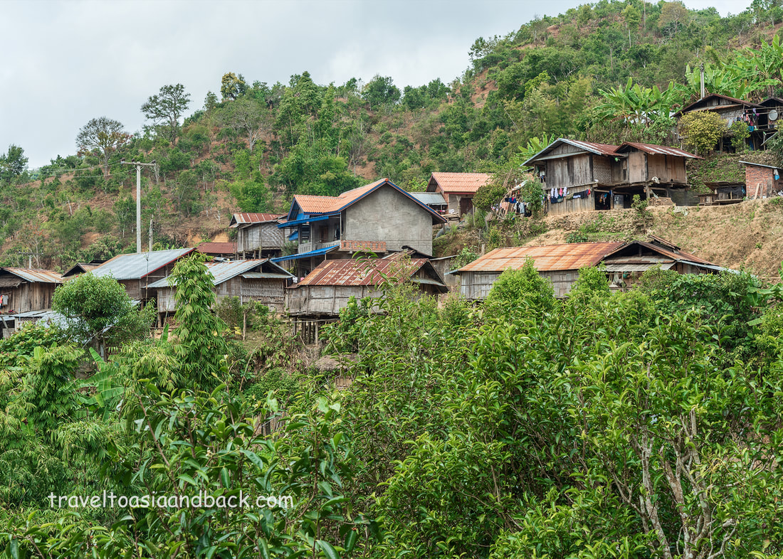 traveltoasiaandback.com - Tea trees, Ban Komaen Village, Phongsaly Province, Laos