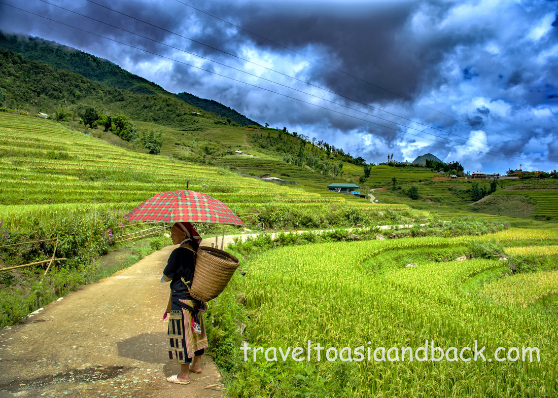Trekking in Sapa. On the road to Ta Phin Village, Sapa, Lao Cai Province, Vietnam